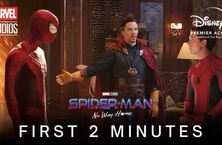 Spider-Man : No Way Home – L'importance des rôles d'Andrew Garfield et de Tobey Maguire ?