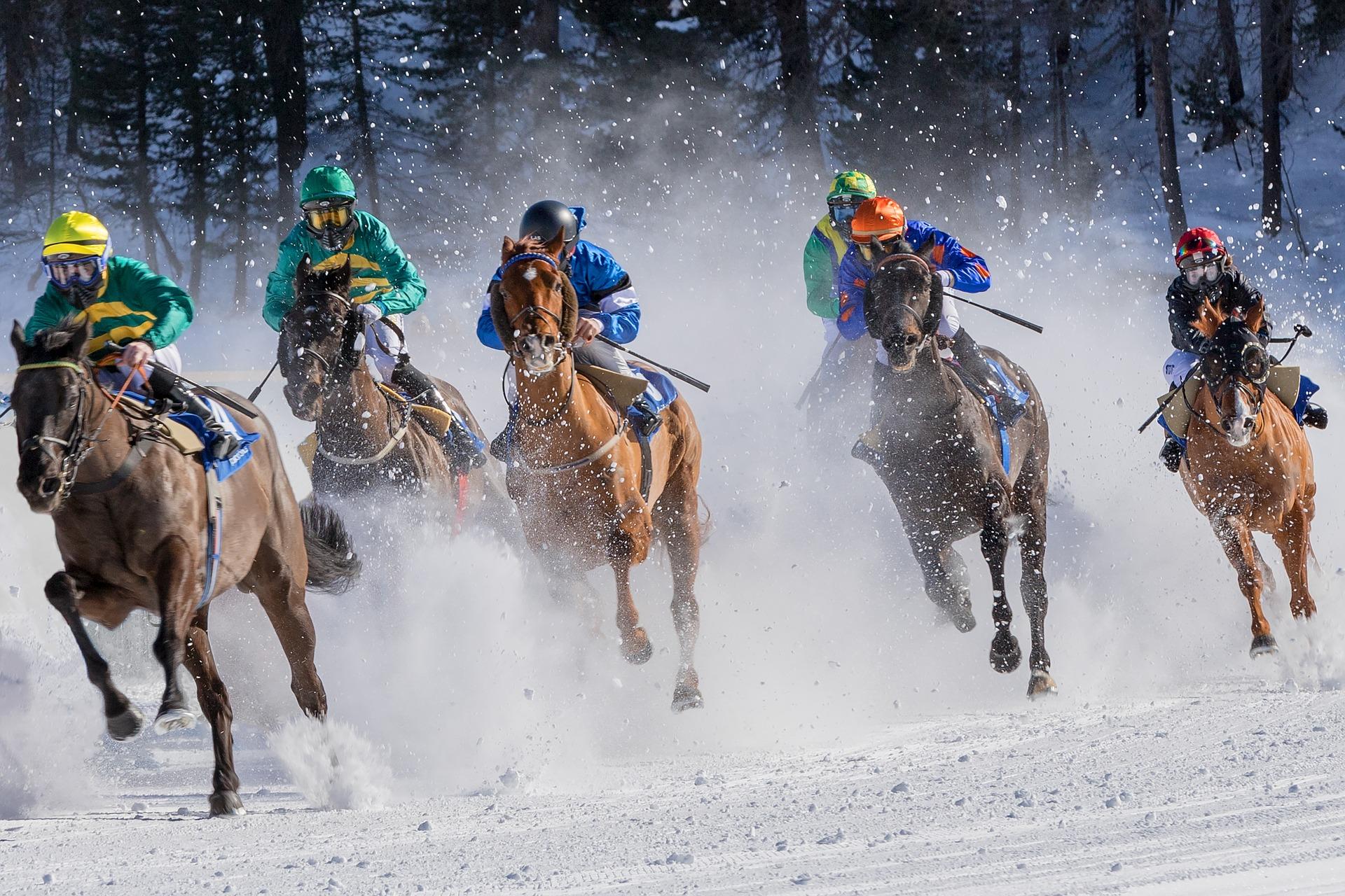 Comment fonctionnent les paris sur les courses de chevaux ?